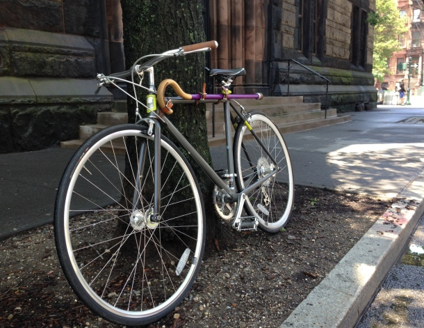 A wide shot of the bike with purple cane attached, leaning against a tree in New York.
